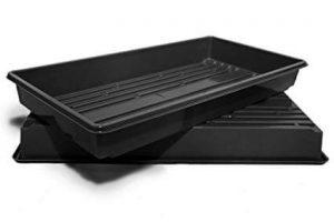 tray for broccoli microgreens