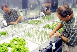 nasa hydroponics research
